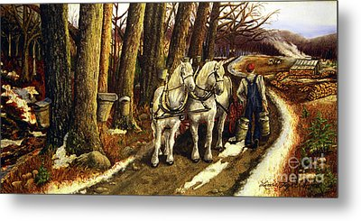 Maple Way Metal Print