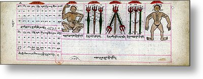 Mongolian Astrology Metal Print by National Library Of Medicine