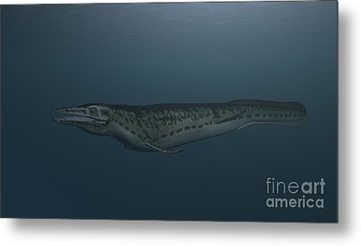 Mosasaur Swimming In Prehistoric Waters Metal Print by Kostyantyn Ivanyshen