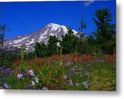 Mount Rainier Metal Print by Jerry Cahill