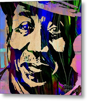 Muddy Waters Collection Metal Print