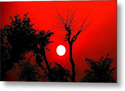 Nature Metal Print by Viren Rana