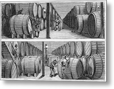 New York Wine Industry Metal Print