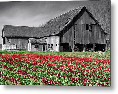 Metal Print featuring the photograph Old And New by Matthew Ahola