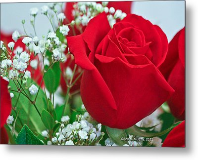 Metal Print featuring the photograph One Red Rose by Ann Murphy