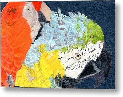 2 Parrots Metal Print by Bav Patel