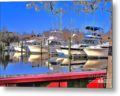 Peaceful Marina Metal Print