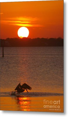 Metal Print featuring the photograph Pelican Sunset by Tannis  Baldwin