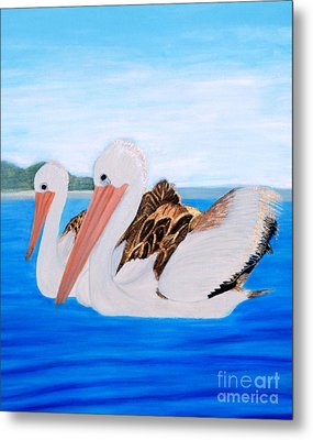 Pelicans.   Inspirations Collection. Metal Print