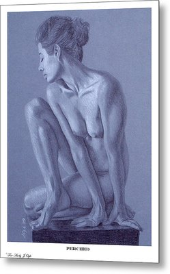Metal Print featuring the painting Perched  by Joseph Ogle