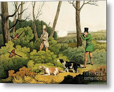 Pheasant Shooting Metal Print by Henry Thomas Alken
