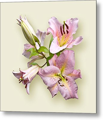 Metal Print featuring the photograph Pink Lilies On Cream by Jane McIlroy