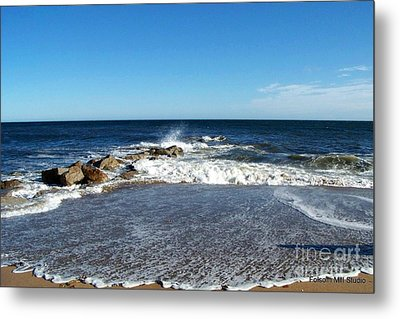 Metal Print featuring the photograph Plum Island Landscape by Eunice Miller