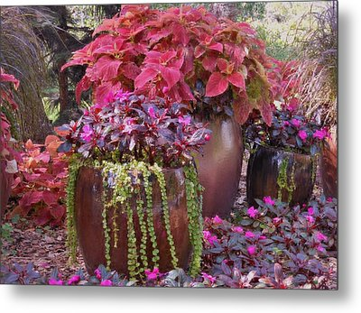 Pots Of Flowers Metal Print by Kay Gilley