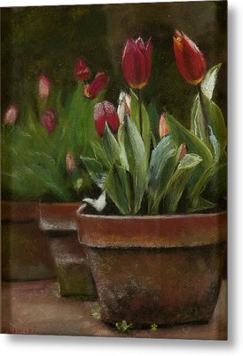 Potted Tulips Metal Print