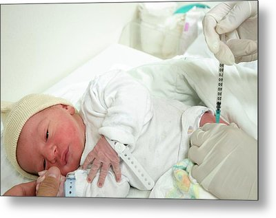 Preterm Birth Baby Metal Print by Photostock-israel