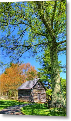 Puckett's Cabin Metal Print by Paul Johnson