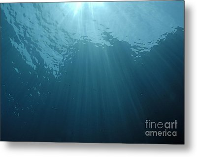 Rays Of Sunlight Shining Into Water Metal Print by Sami Sarkis