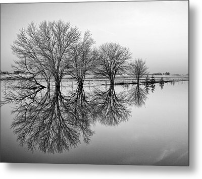 Reflection Metal Print by Tom Druin