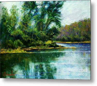 Reflections Metal Print by Bruce Schrader