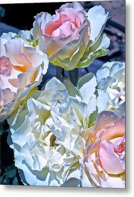 Rose 59 Metal Print