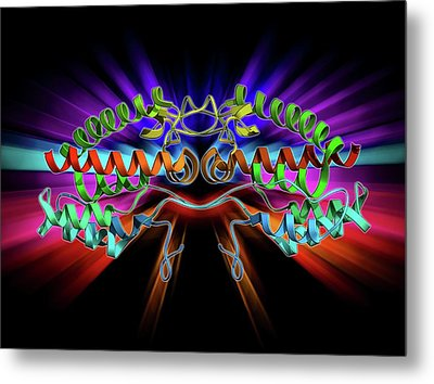 Rous Sarcoma Virus Capsid Protein Metal Print by Laguna Design