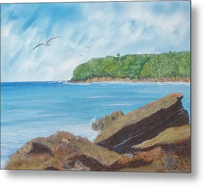 Seagull Seascape Metal Print by Tony Rodriguez