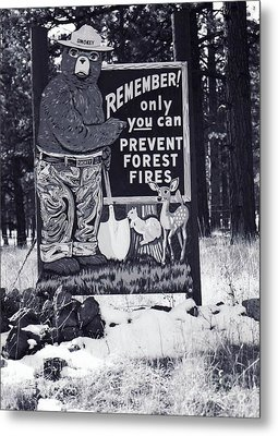 Metal Print featuring the photograph Smokey The Bear by Juls Adams