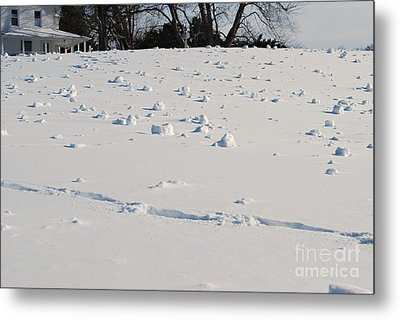 Snow Rollers Metal Print by Lila Fisher-Wenzel