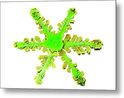 Snowflake Metal Print by Ars/us Dept Of Agriculture