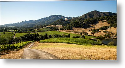 Sonoma Valley Metal Print by Clay Townsend
