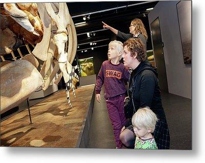 Sperm Whale Skeleton Display Metal Print