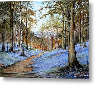 Spring In Wentwood Metal Print by Andrew Read