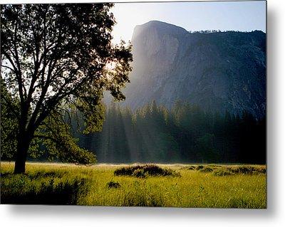 Summer Sunrise In Yosemite Valley Metal Print
