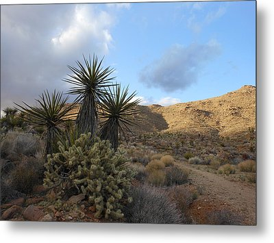 The Living Desert Metal Print