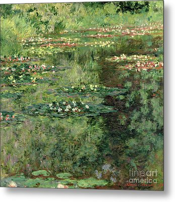 The Waterlily Pond Metal Print