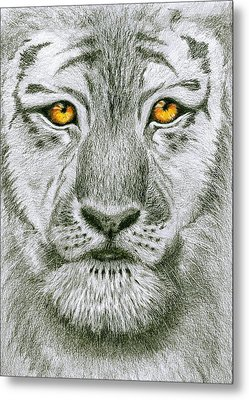 Tiger Tiger Burning Bright Metal Print