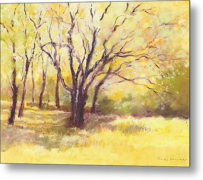 Trees2 Metal Print by J Reifsnyder