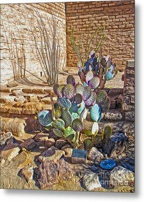 Tucson Arizona Cactus Metal Print by Gregory Dyer