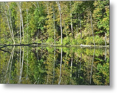 Two Of A Kind Metal Print by Frozen in Time Fine Art Photography