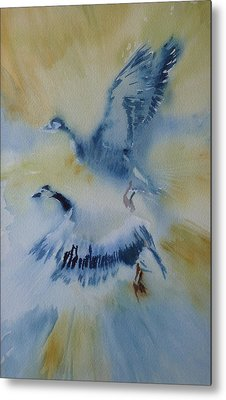Up And Away Metal Print by Lori Ippolito