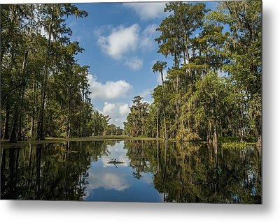 Usa, Louisiana, Swamp Landscape Breaux Metal Print by Dosfotos