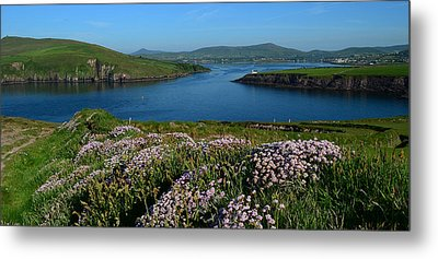 View Over Dingle Bay Metal Print by Barbara Walsh