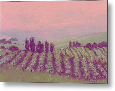 Vineyard At Dusk Metal Print by J Reifsnyder