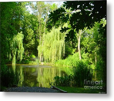 Metal Print featuring the photograph Weeping Willow Pond by Lyric Lucas