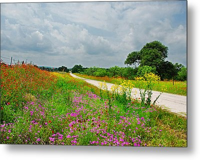 Wildflower Wonderland Metal Print