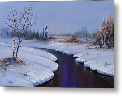 Winter Stillness Metal Print by C Steele