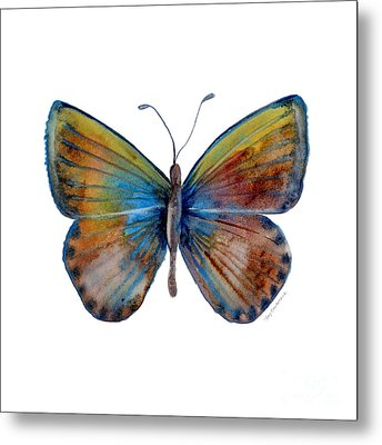 22 Clue Butterfly Metal Print