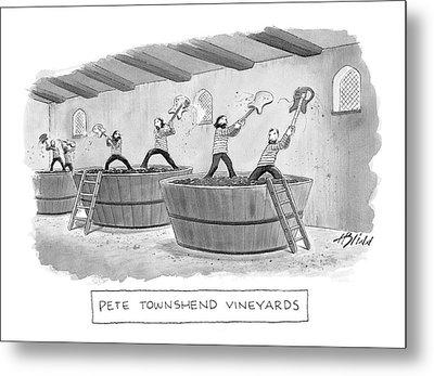 Pete Townshend Vineyards Metal Print