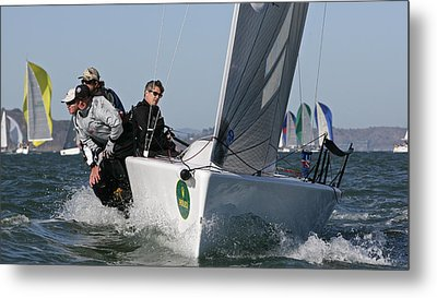 Bay Regatta Metal Print by Steven Lapkin
